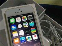 你敢出价,我就敢卖!64G 土豪金苹果5s