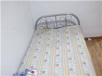 折叠单人床,五折出售