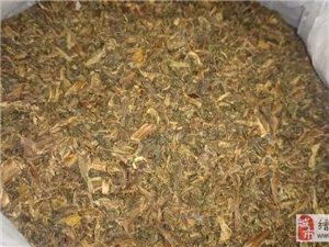 [五云] 8元/斤出自家做的芥菜干,县城区域可送货