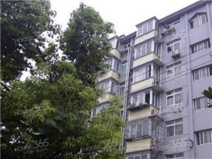 大厂 新华五村 2室 62平米