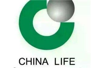中国人寿保险公司各类医疗,意外,教育,汽车保险