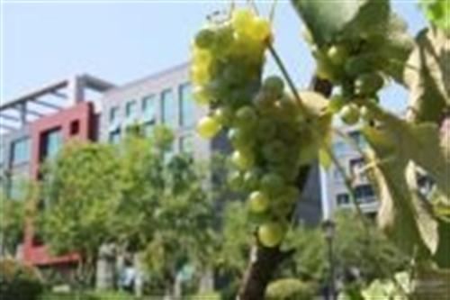 南京工大科技产业园实景图