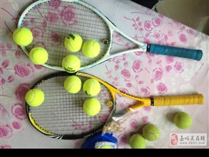 95新网球拍两支(可单出,每支90元,送球)