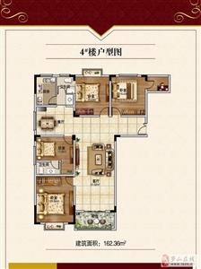4#楼户型图
