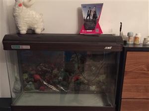 出售9成新生态鱼缸一个