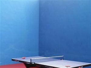 低价出售9成新兵乓球桌(红双喜大彩虹)