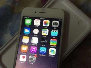 近乎全新的苹果6金色64G