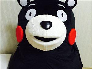 熊本熊人偶服开业庆典大型活动专用