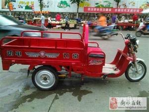 常力电动三轮车