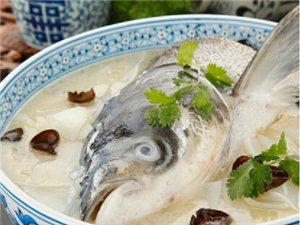野生天麻鱼头汤