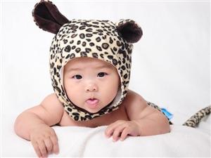 宝宝照片案例图片