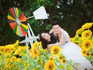 婚纱摄影之花海系列