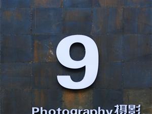9studio  摄影