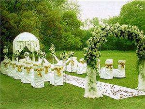 森系婚礼现场