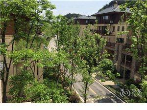 重庆途家斯维登度假公寓(鉴山国际)