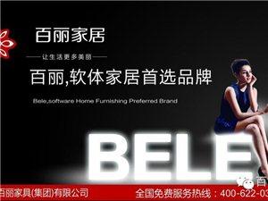 香港百丽家具(集团)有限公司