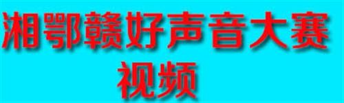 湘鄂赣好声音歌手大赛视频