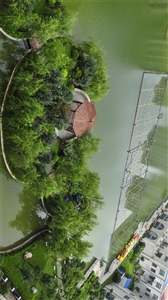 中央湖�L景�D