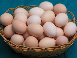兰妹子土鸡蛋.三峡特产