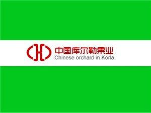 中国库尔勒果业有限公司