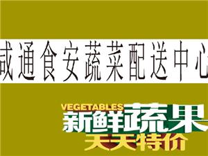 咸通食安蔬菜配送中心