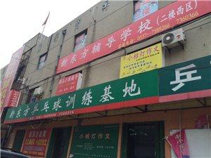 新东方乒乓球训练基地