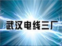 武汉电线三厂